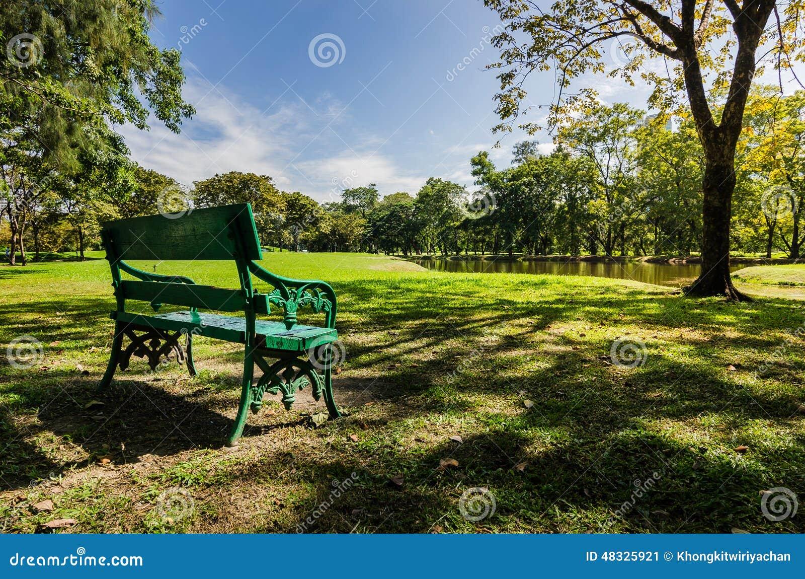 banc en parc public avec l 39 ombre de l 39 arbre vert image stock image du positionnement tang. Black Bedroom Furniture Sets. Home Design Ideas