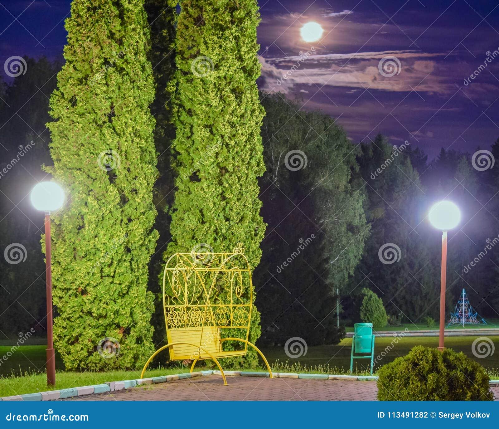 Banc sous la lune photo stock. Image du lune, sous, bench ...