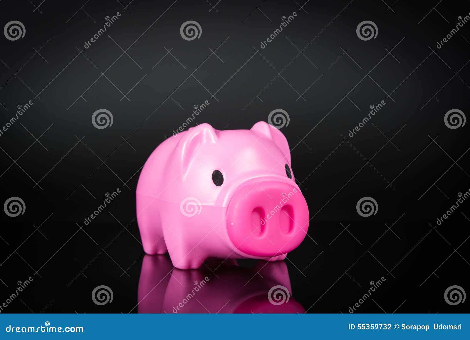 Banca Piggy isolata
