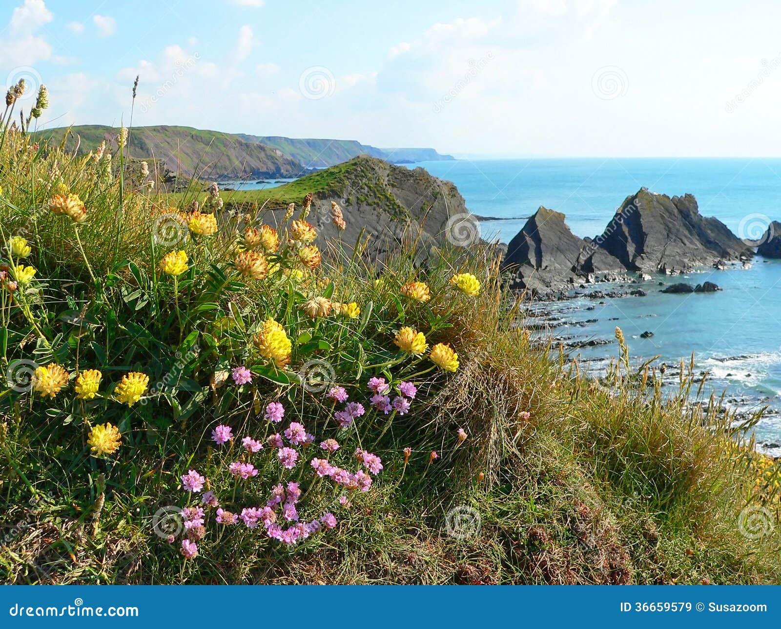 Landscape Designer Cornwall
