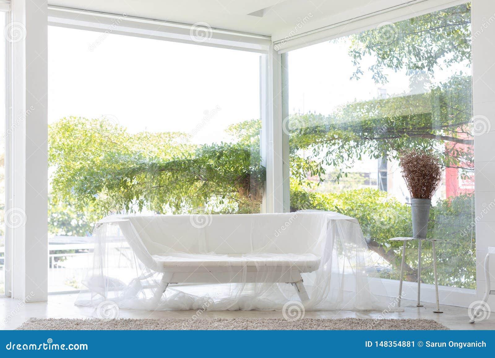 Banco da banheira ou sof? vazio da cuba coberto pela cortina com a janela e o fundo grandes da ?rvore no est?dio