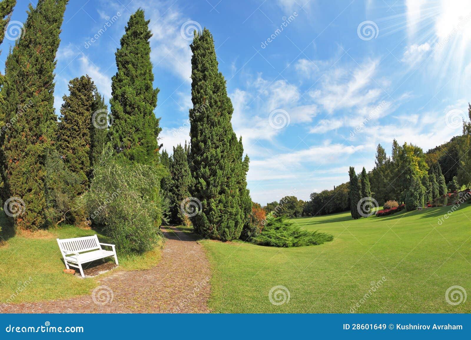 banco de madeira para jardim branco:Banco De Madeira Branco Na Borda  #2168AA 1300x957