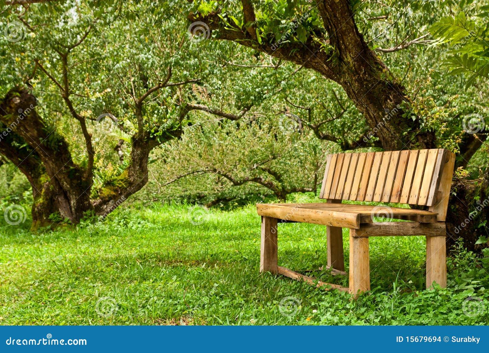bancos de jardim no rs:Wood Bench
