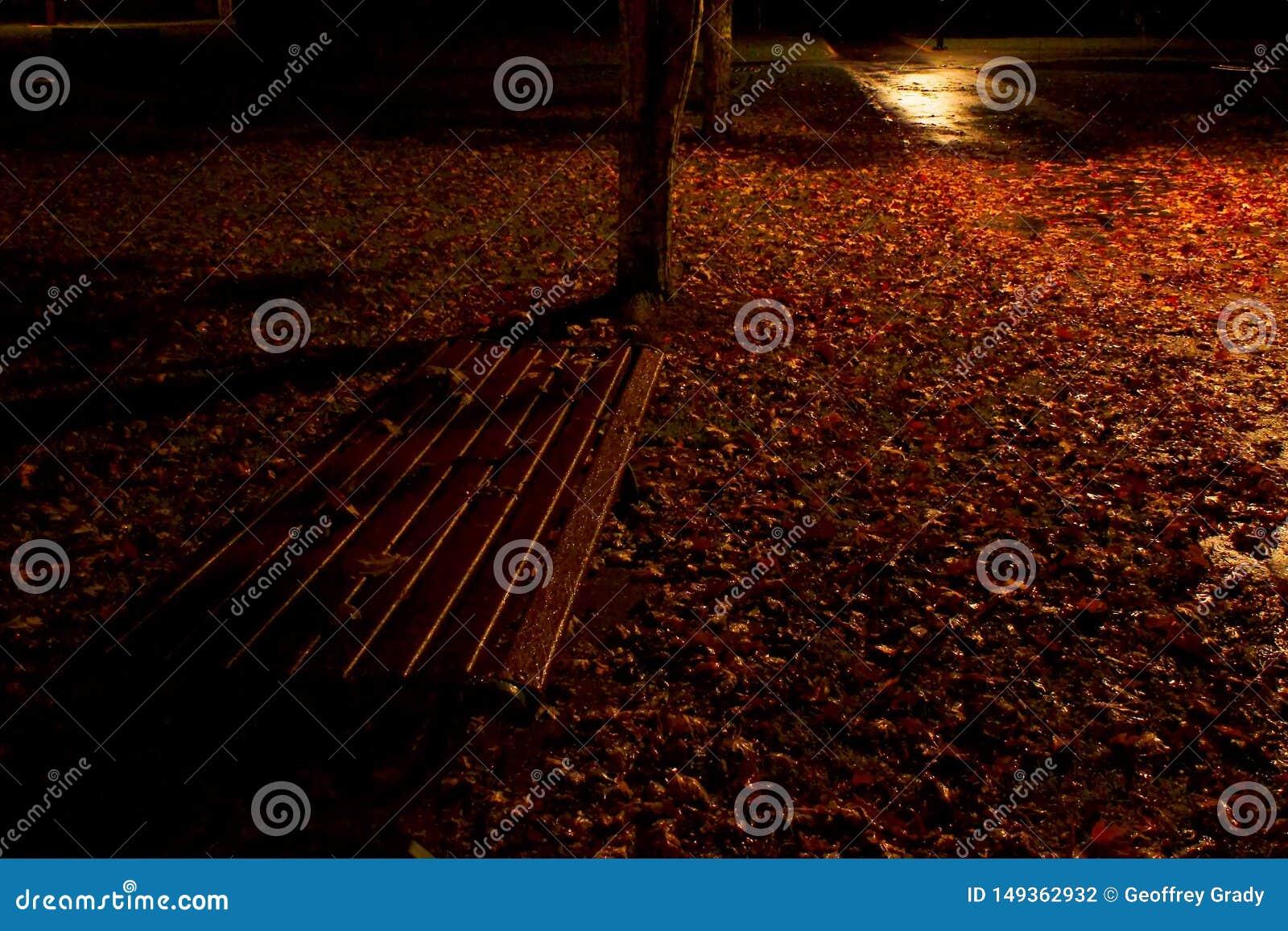 Banco de parque atmosf?rico en la noche con las hojas de oto?o