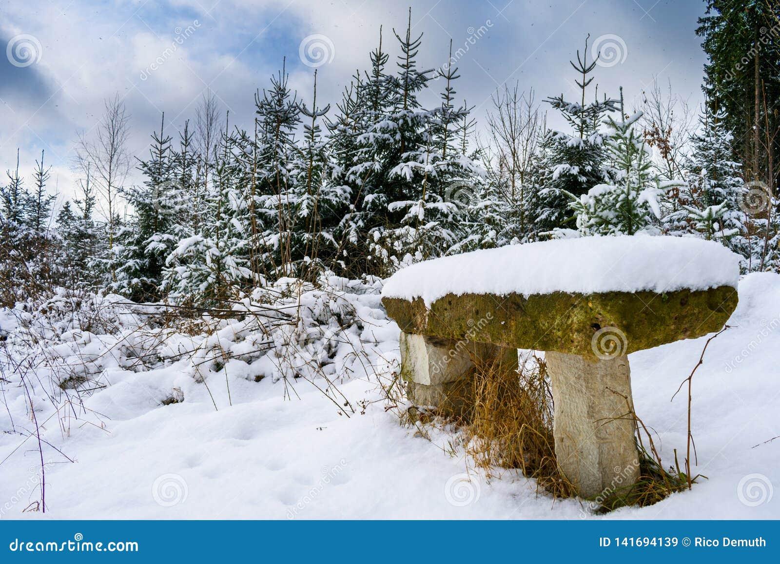 Banco de piedra nevado en invierno