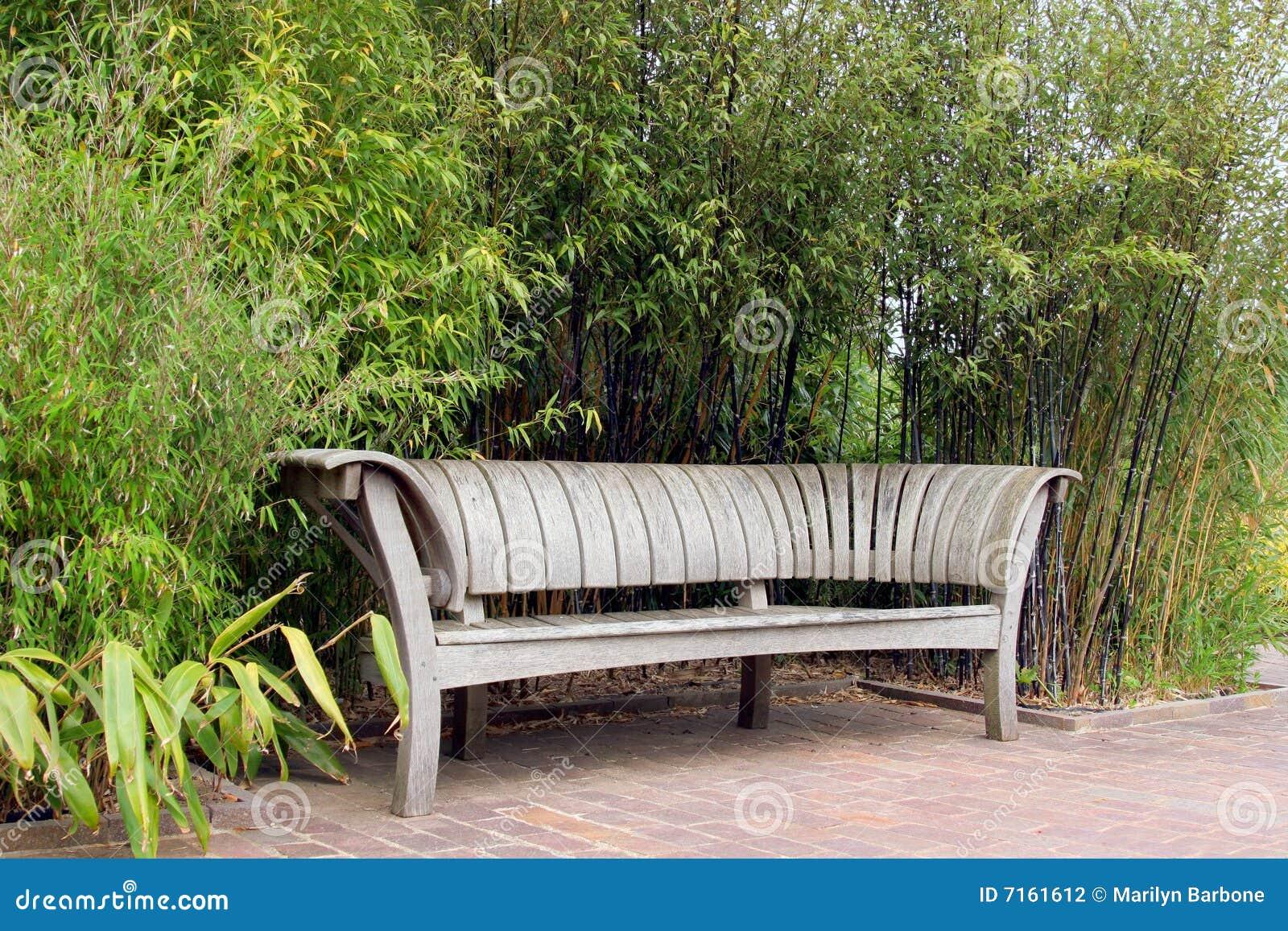 banco de madeira do jardim do carvalho japonês que está em um  #7B9932 1300x957