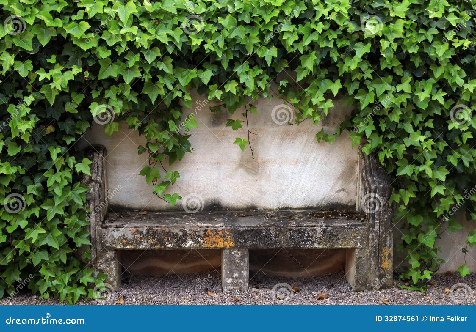Banco ed edera di pietra sulla vecchia parete rurale della for Planimetrie gratuite della casa del campione