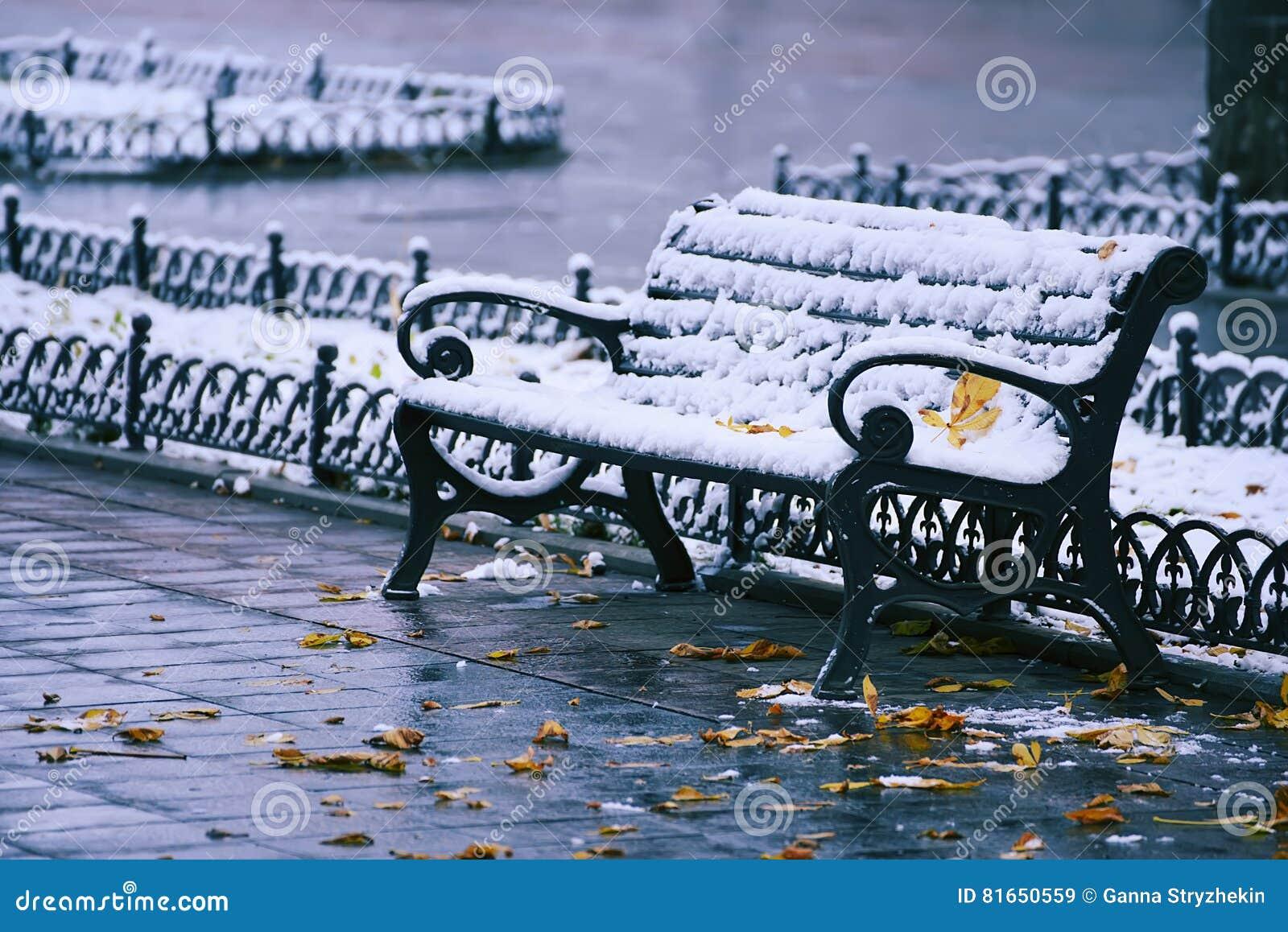 Banco en nieve y las hojas del amarillo
