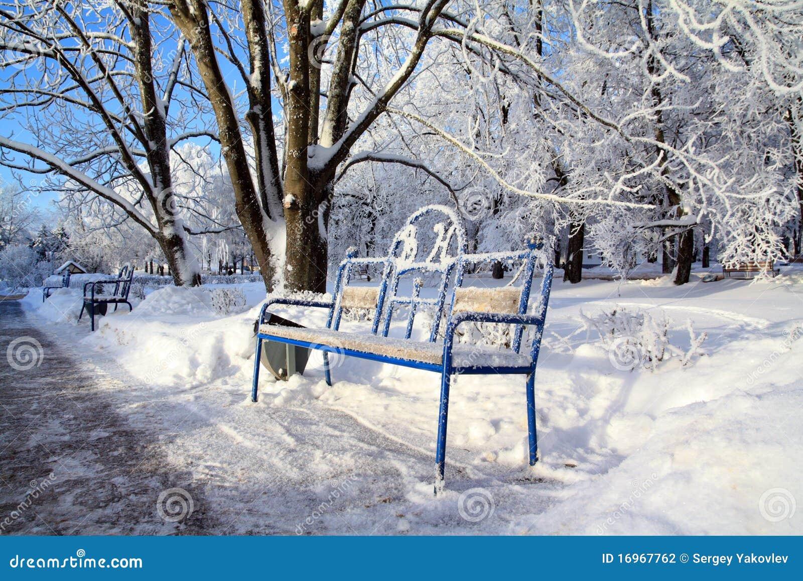 Banco en parque del invierno
