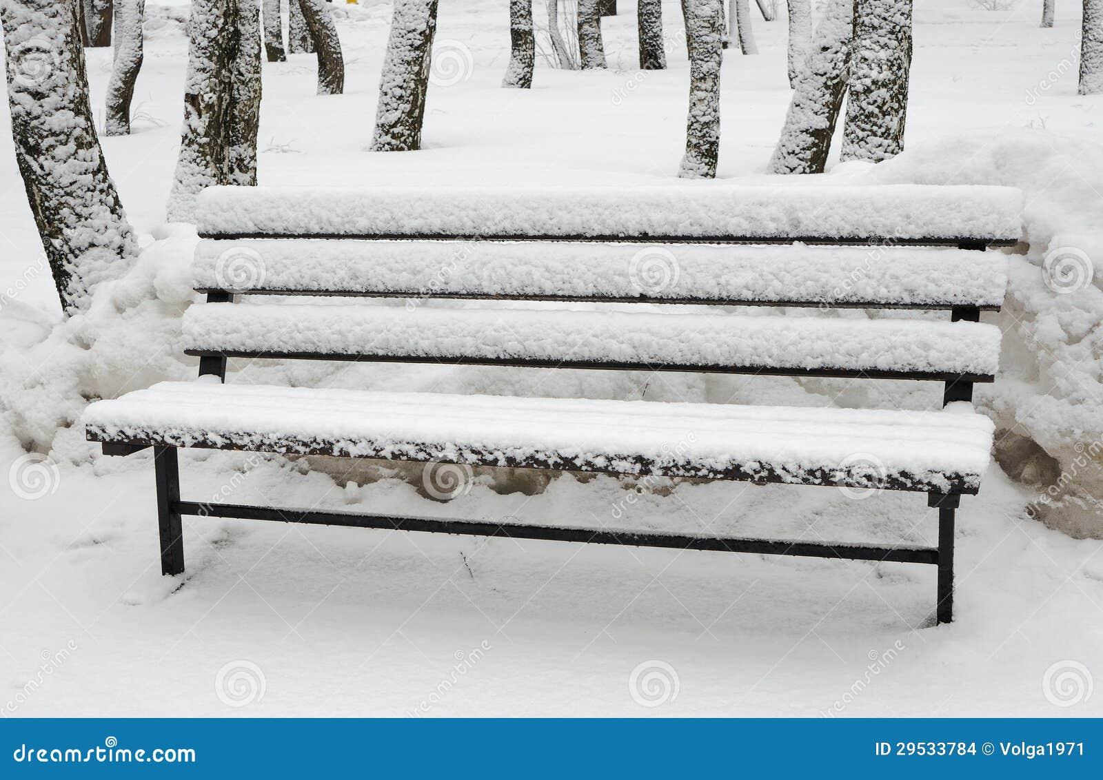 Banco Neve-coberto