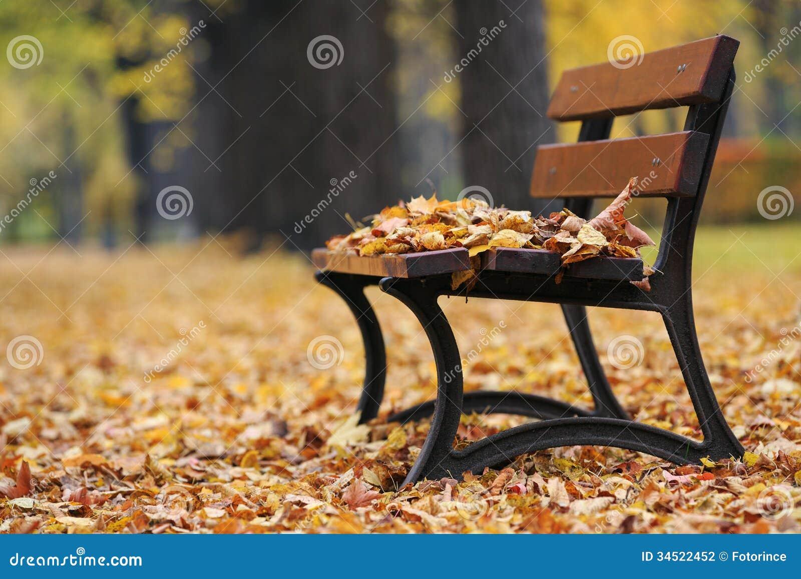 Banco no parque do outono