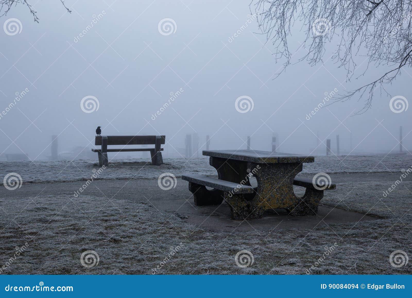 Banco no parque nevoento