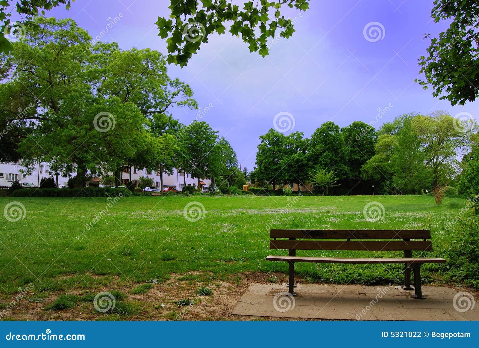 Download Banco solo nella sosta fotografia stock. Immagine di parco - 5321022