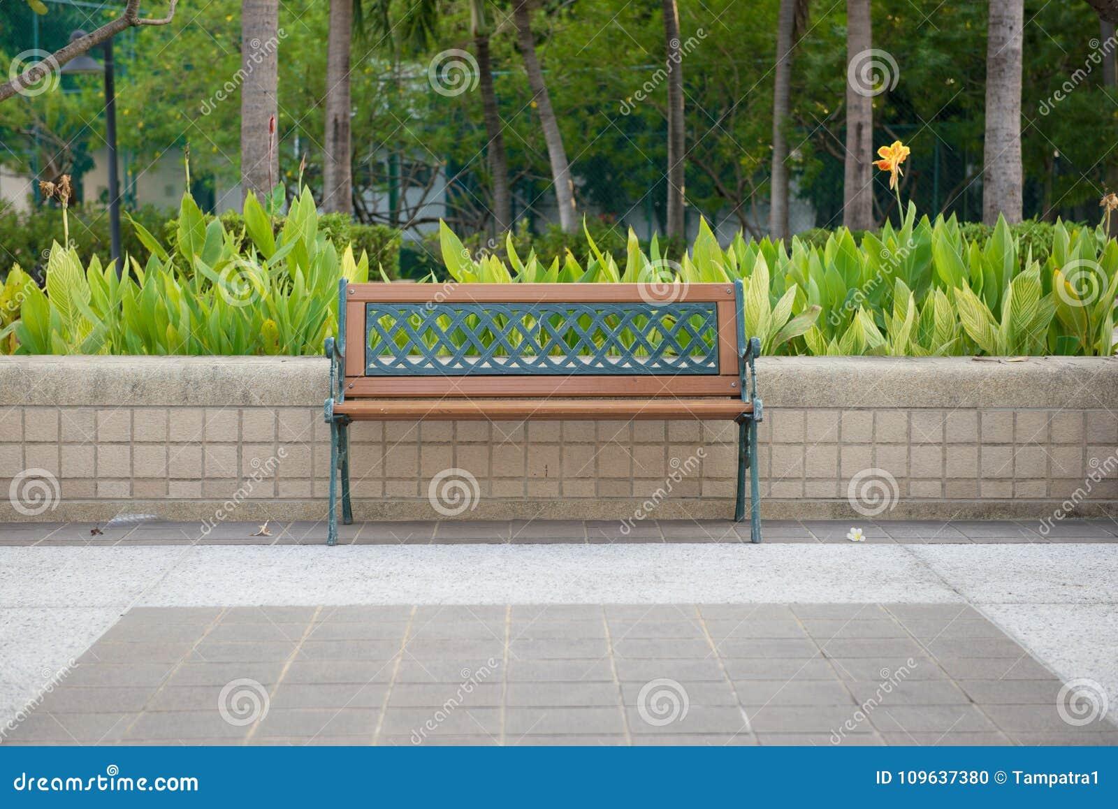 Banco vacío aislado en un parque público con el jardín