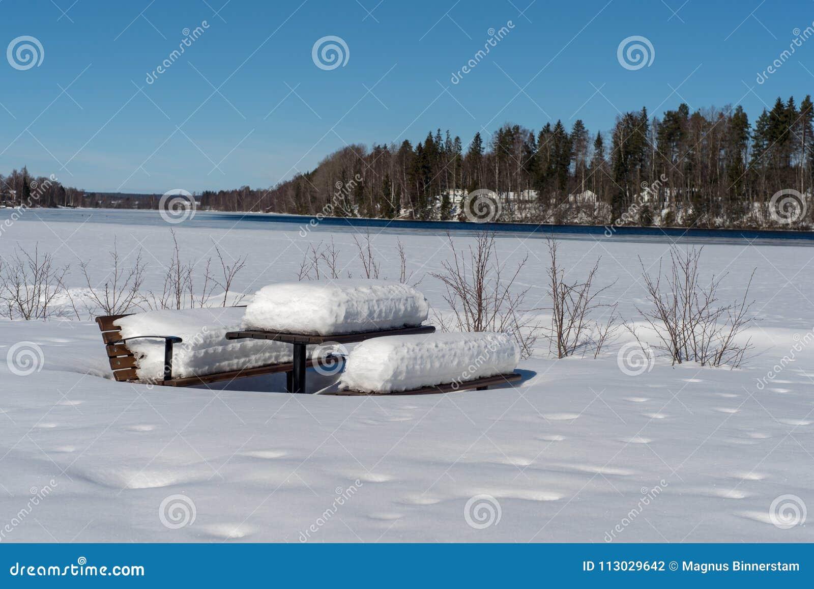 Banco y tabla nevados en invierno