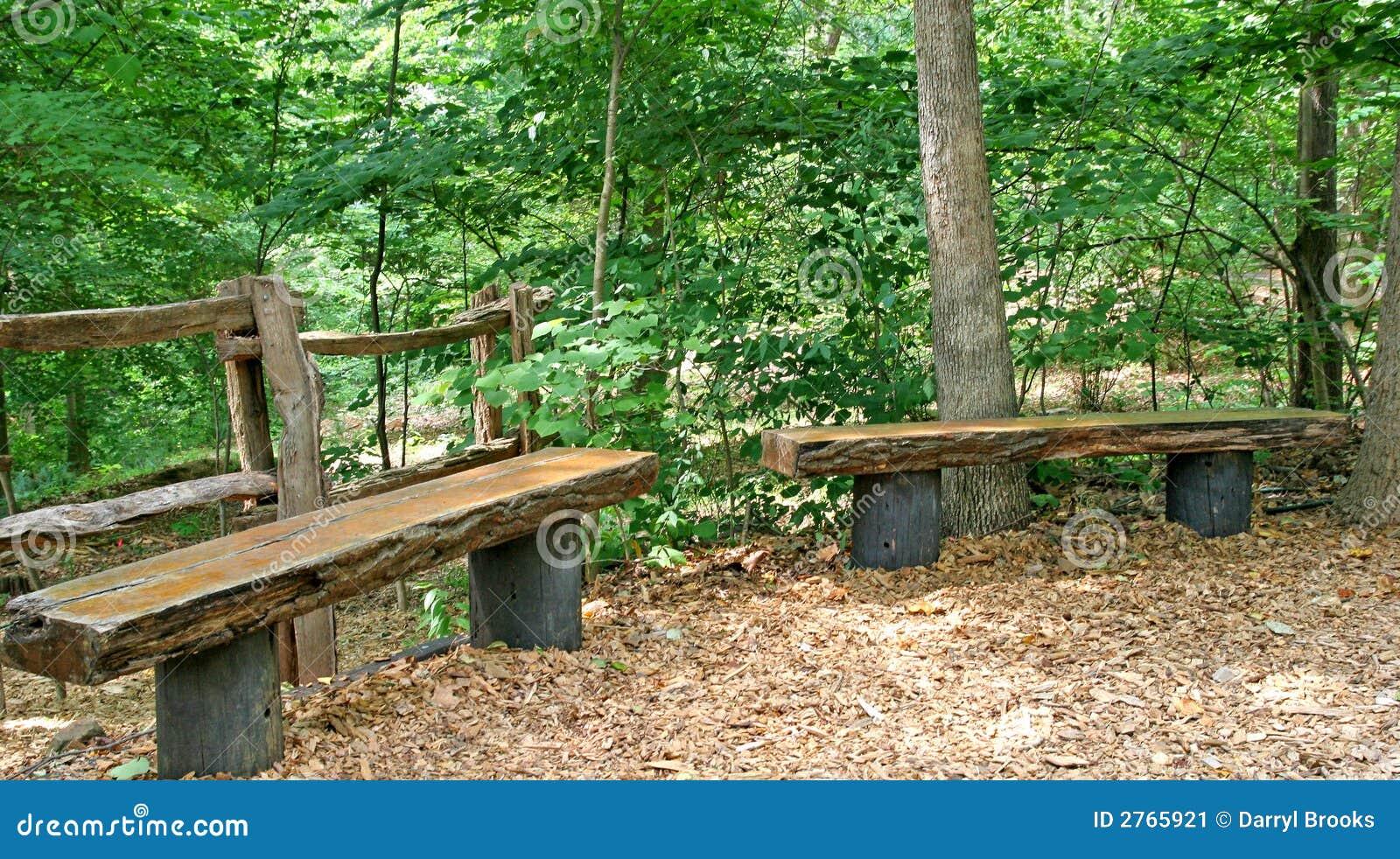 madeira de madeira natural benches em um parque da floresta. #689734 1300x815