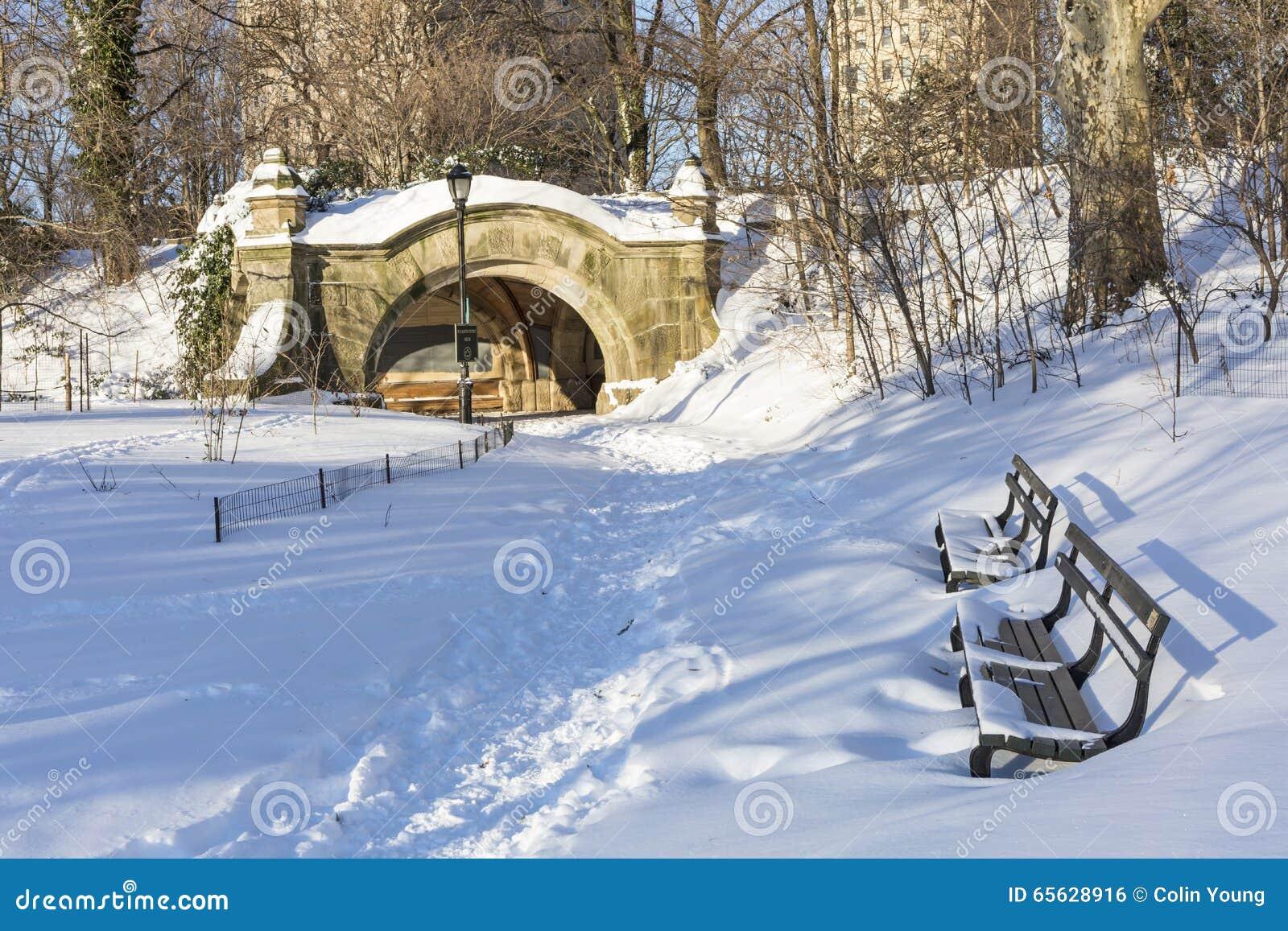 Bancs de parc de perspective dans la neige