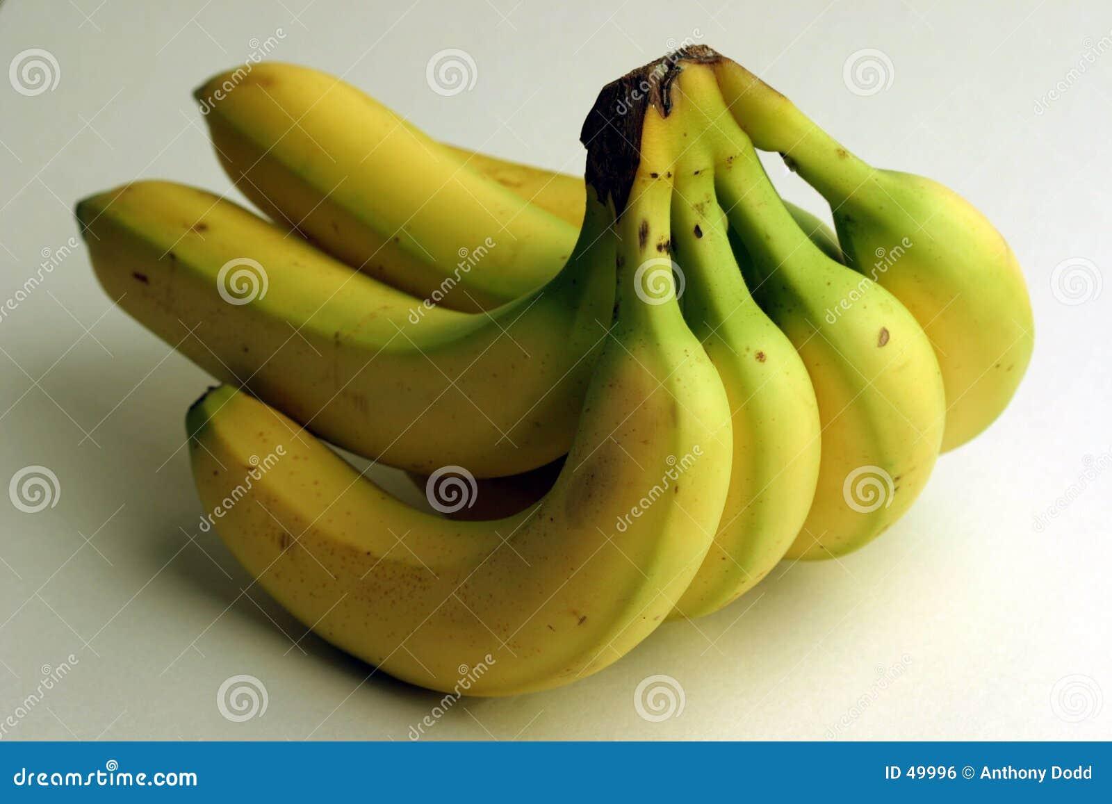 Banda banan