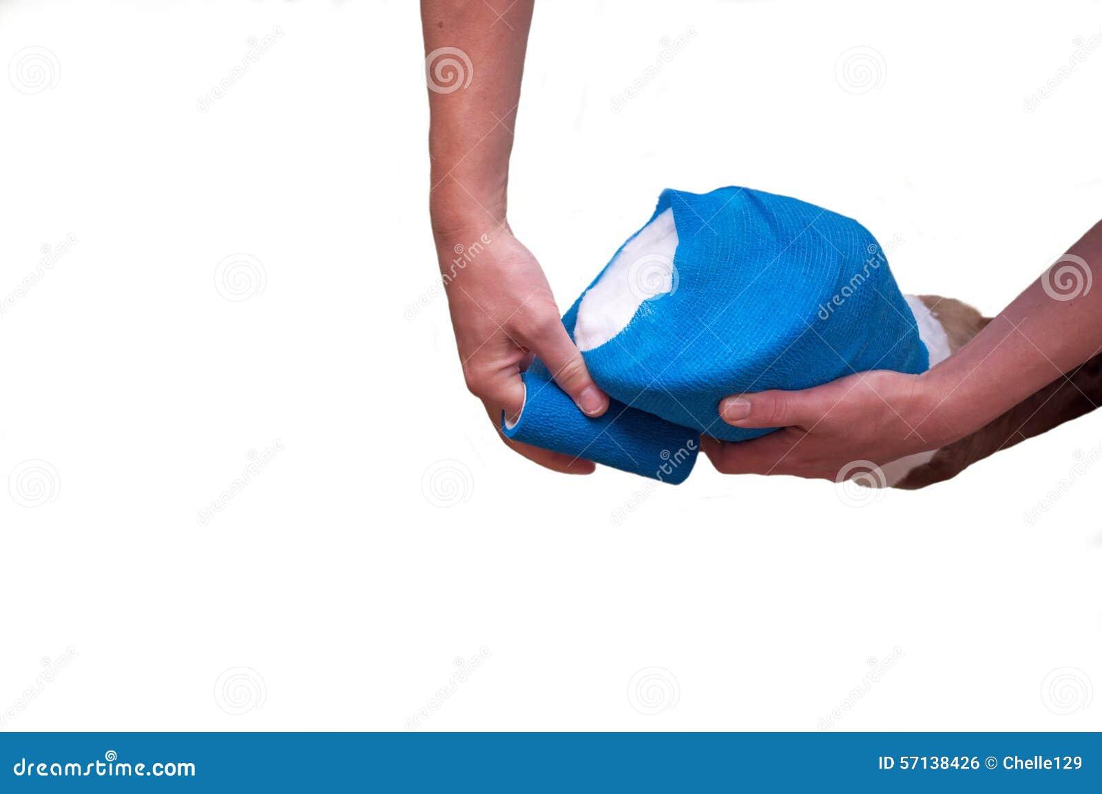 Bandage sur le sabot