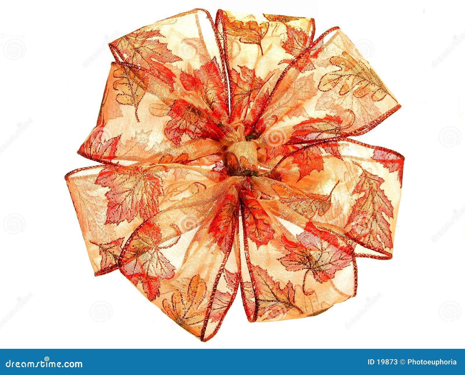 Bande transparente de couleur d automne