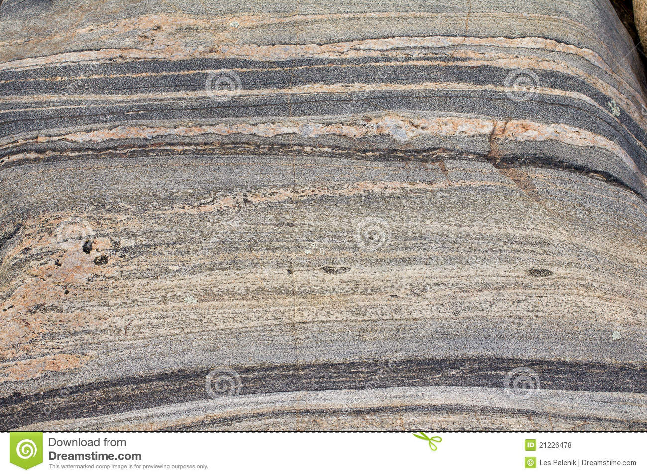 banded gneiss rock stock photo image of physical texture