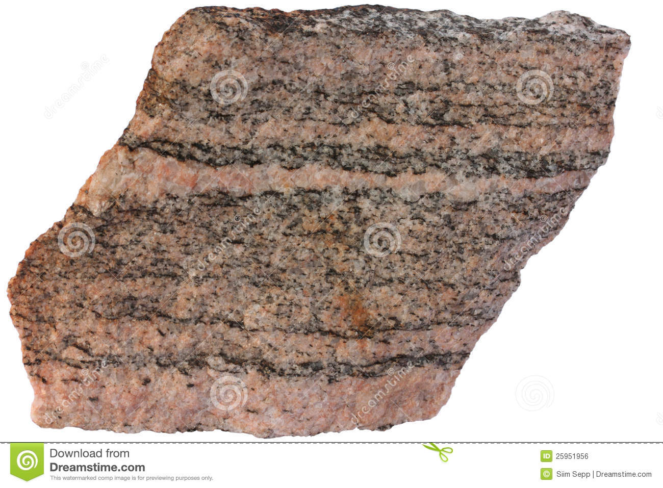 Banded Metamorphic Rock Gneiss From Karelia Stock Photo ...