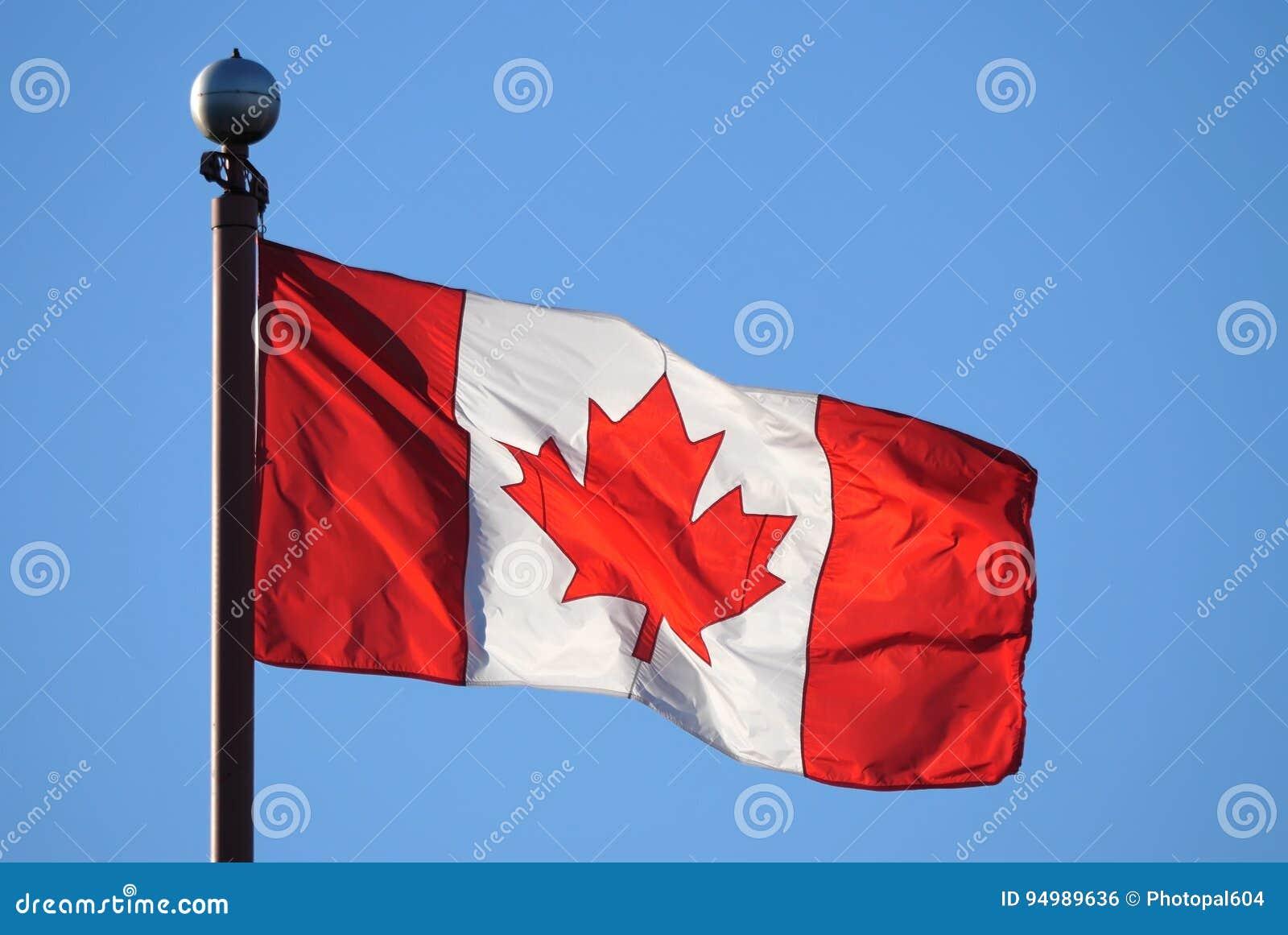 Bandeira canadense de ondulação contra o céu azul
