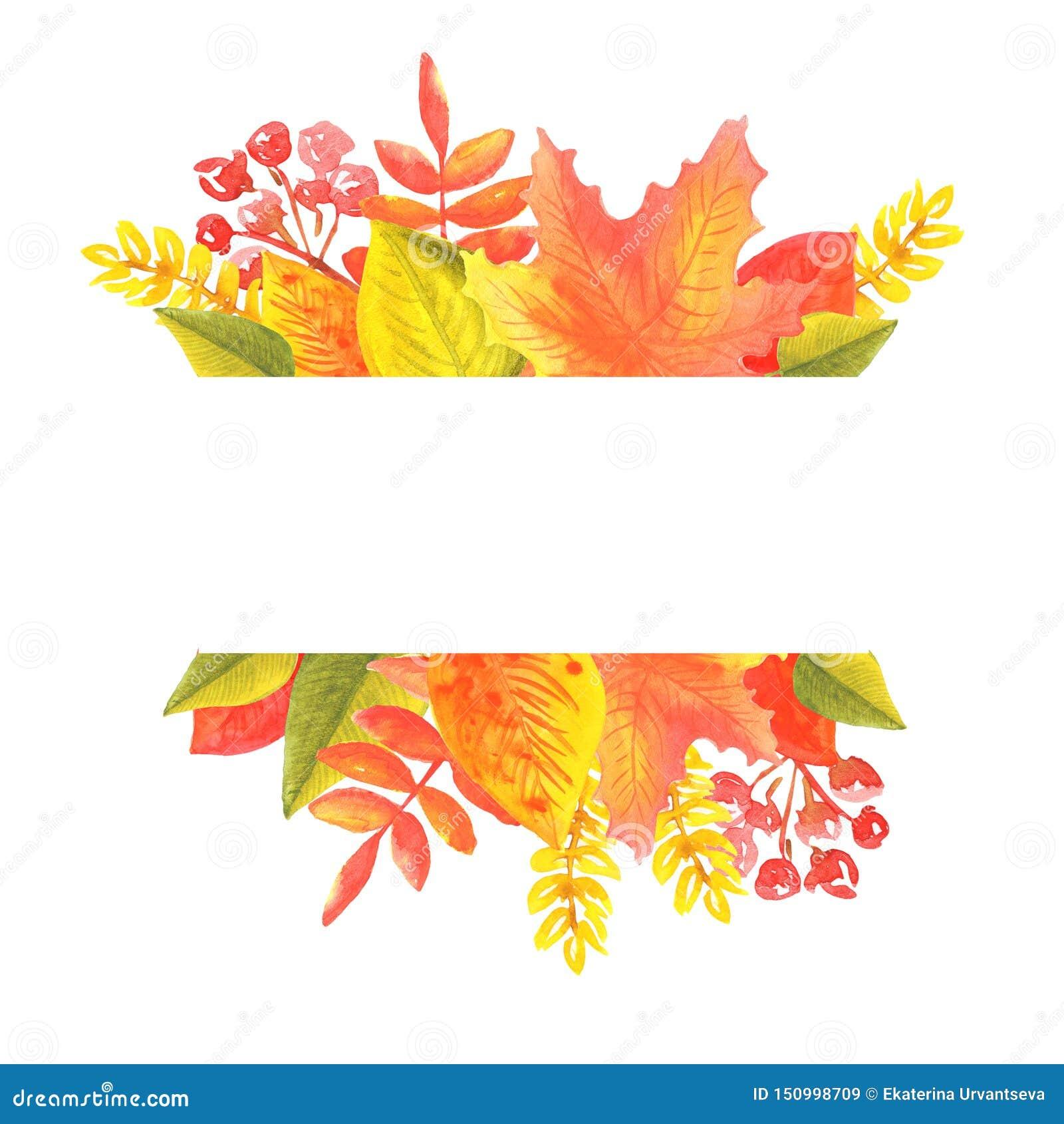 Bandeira da aquarela das folhas e dos ramos isolados no fundo branco