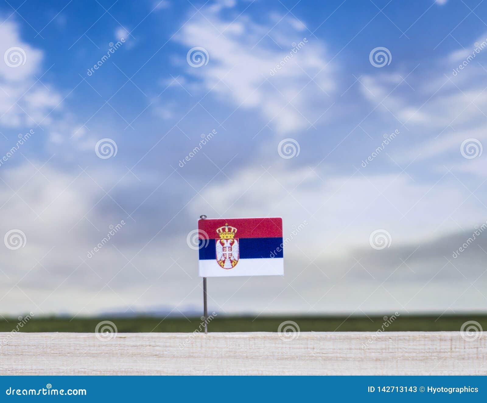 Bandeira da Sérvia com prado vasto e o céu azul atrás dele