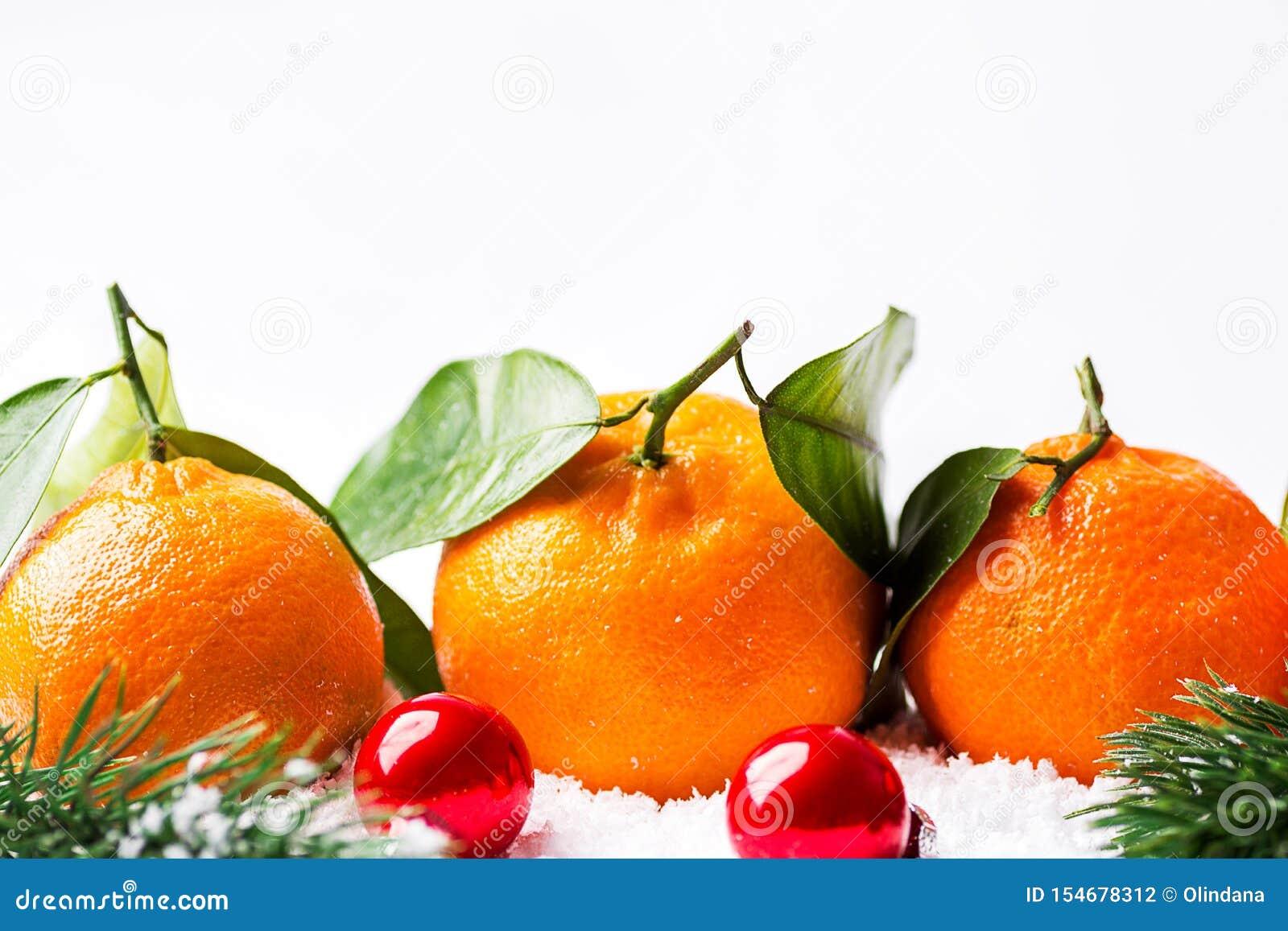 Bandeira do cartaz do cartão dos anos novos do Natal com as tangerinas frescas na haste com as bolas verdes dos ramos de árvore d