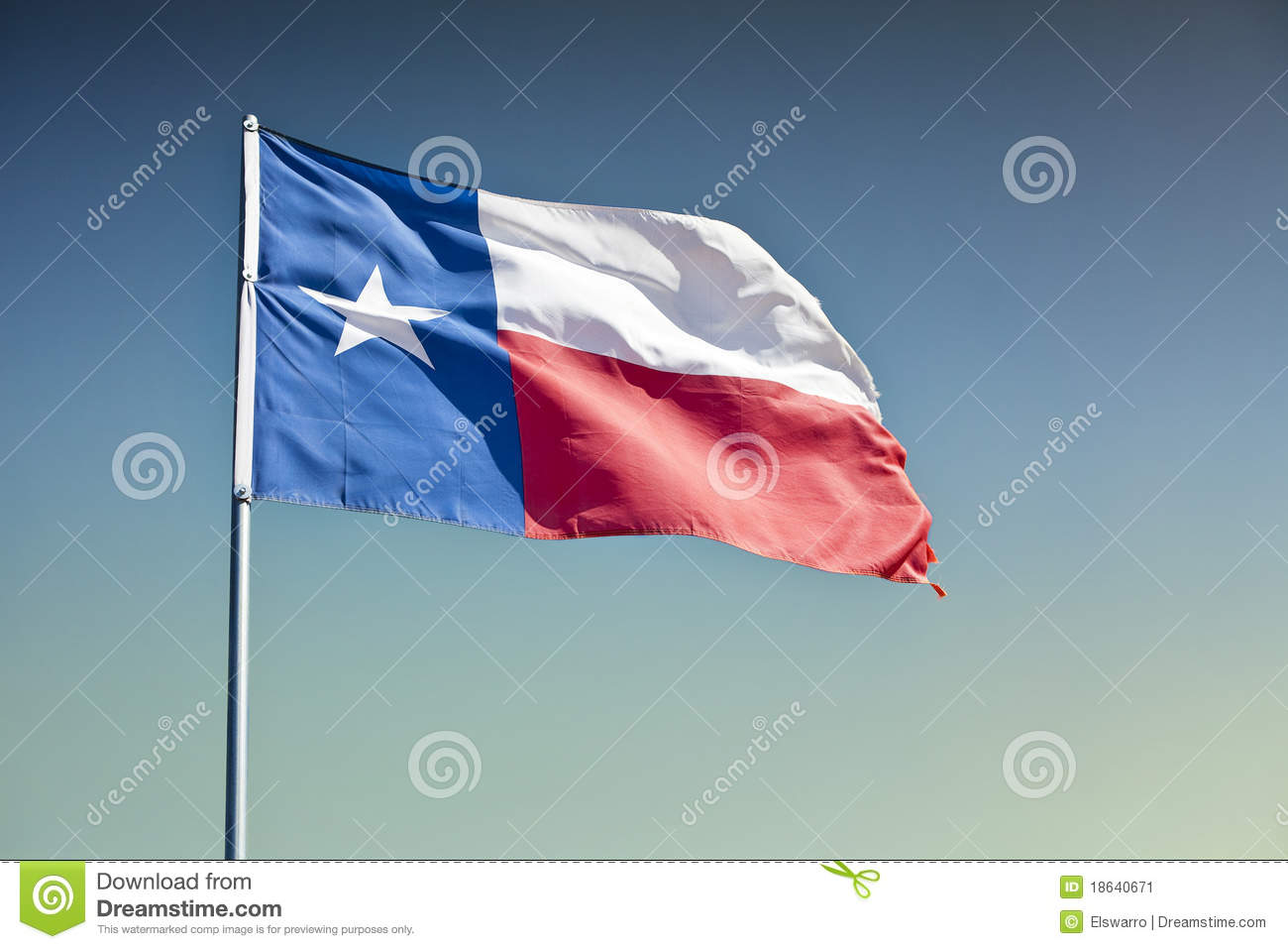 Bandeira do estado de Texas