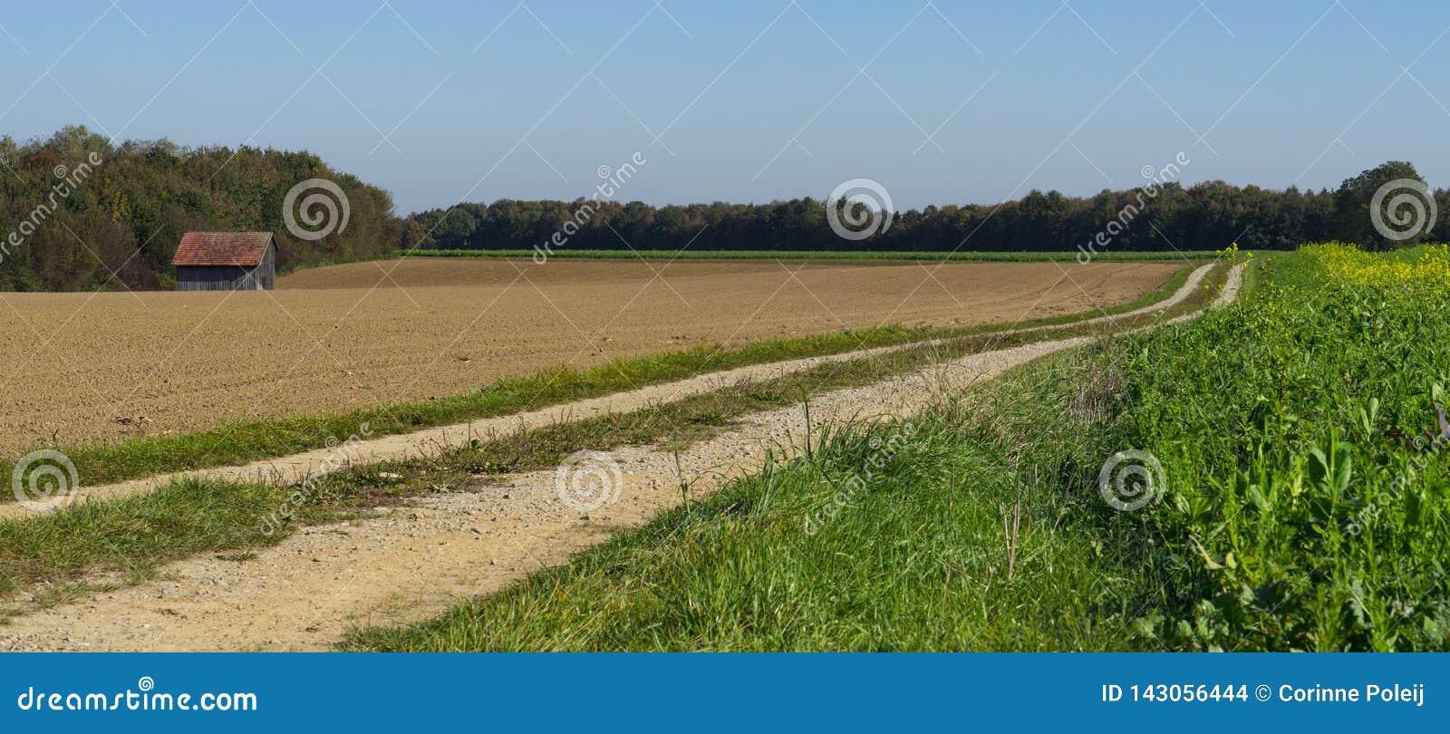 Bandeira paisagem da grama e da terra em Weil, ao longo de Romântico chamado rota Estrada, Alemanha, panorama