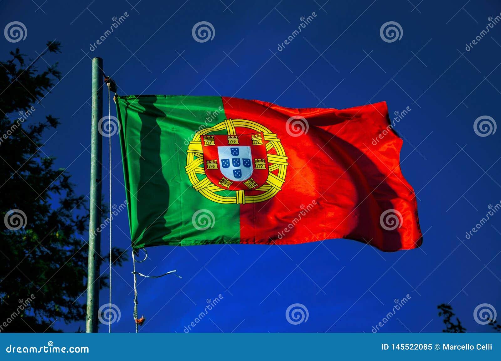 Bandeira portuguesa que vibra no céu azul