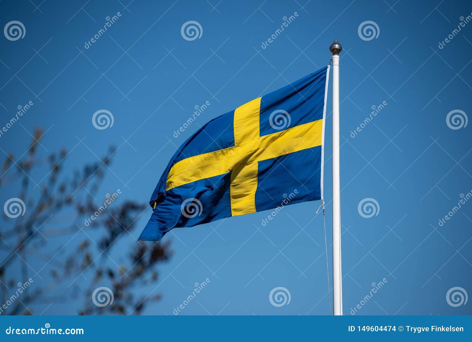 Bandeira sueco em um polo de bandeira