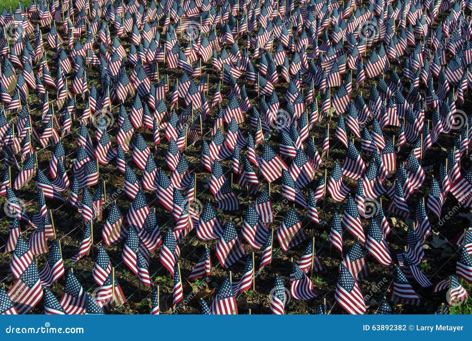 Bandeiras americanas em honra de nossos veteranos