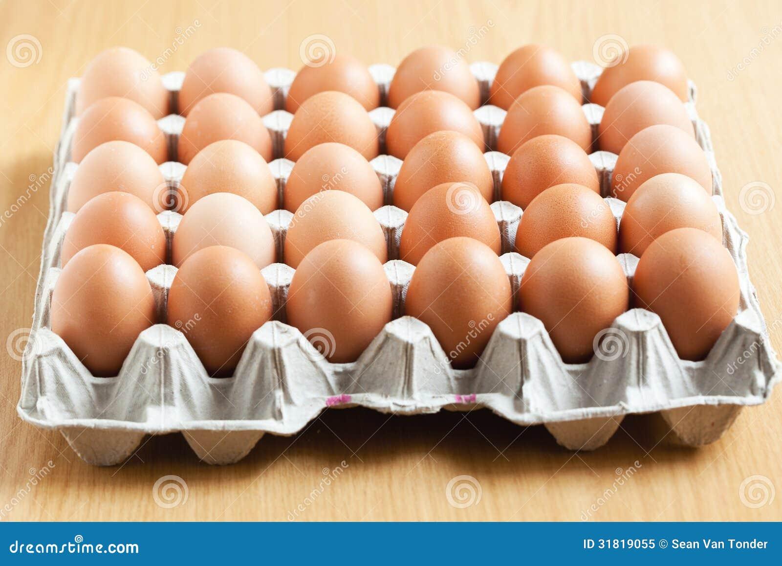 Bandeja de huevos en el empaquetado imagen de archivo for Bandejas para huevos