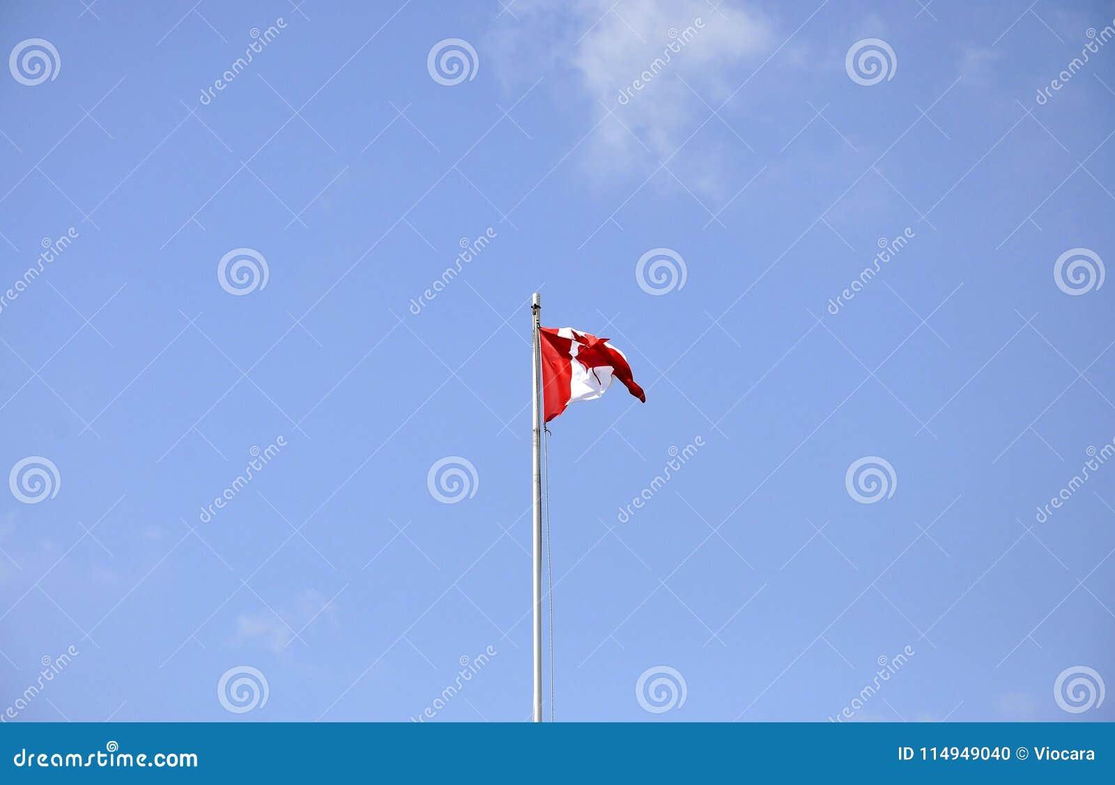 Bandera canadiense en el viento