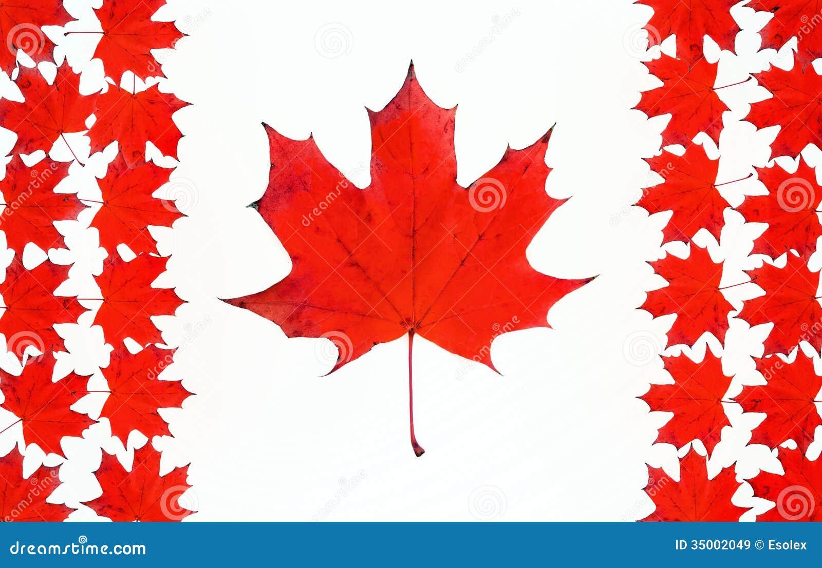 Bandera Canadiense Hecha De Las Hojas Rojas Del Arce. Imagen de ...