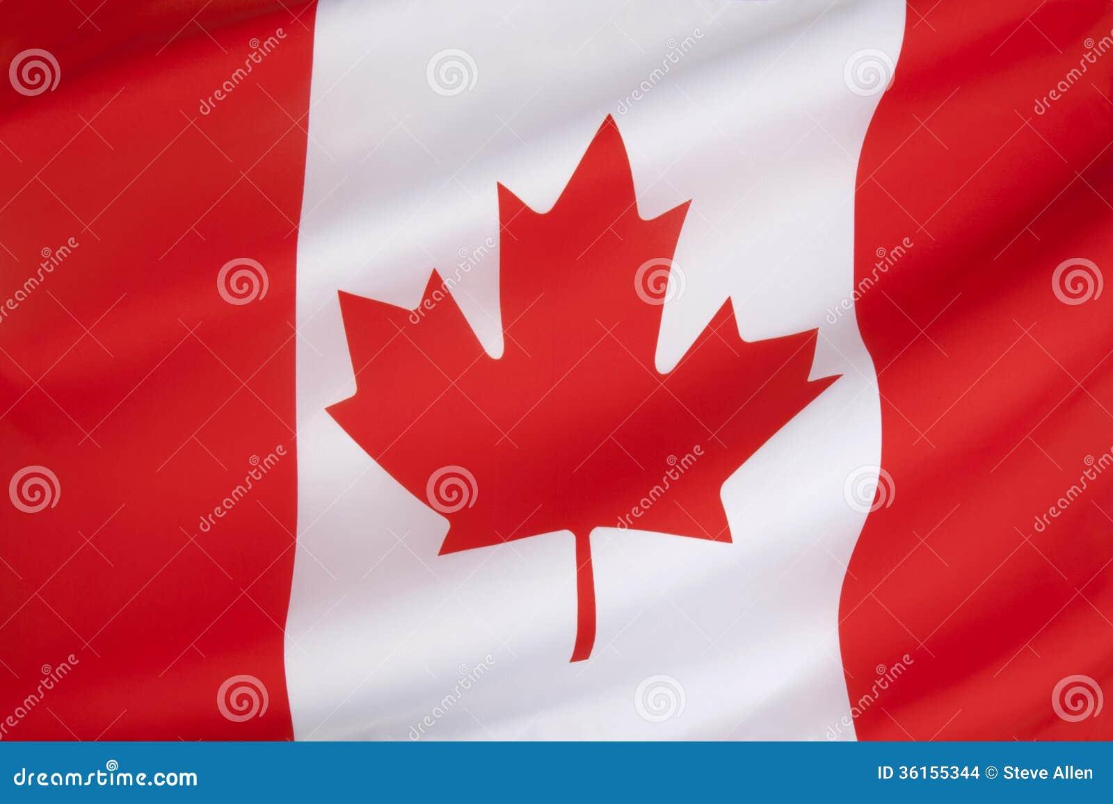Bandera de Canadá foto de archivo. Imagen de arce, turismo - 36155344
