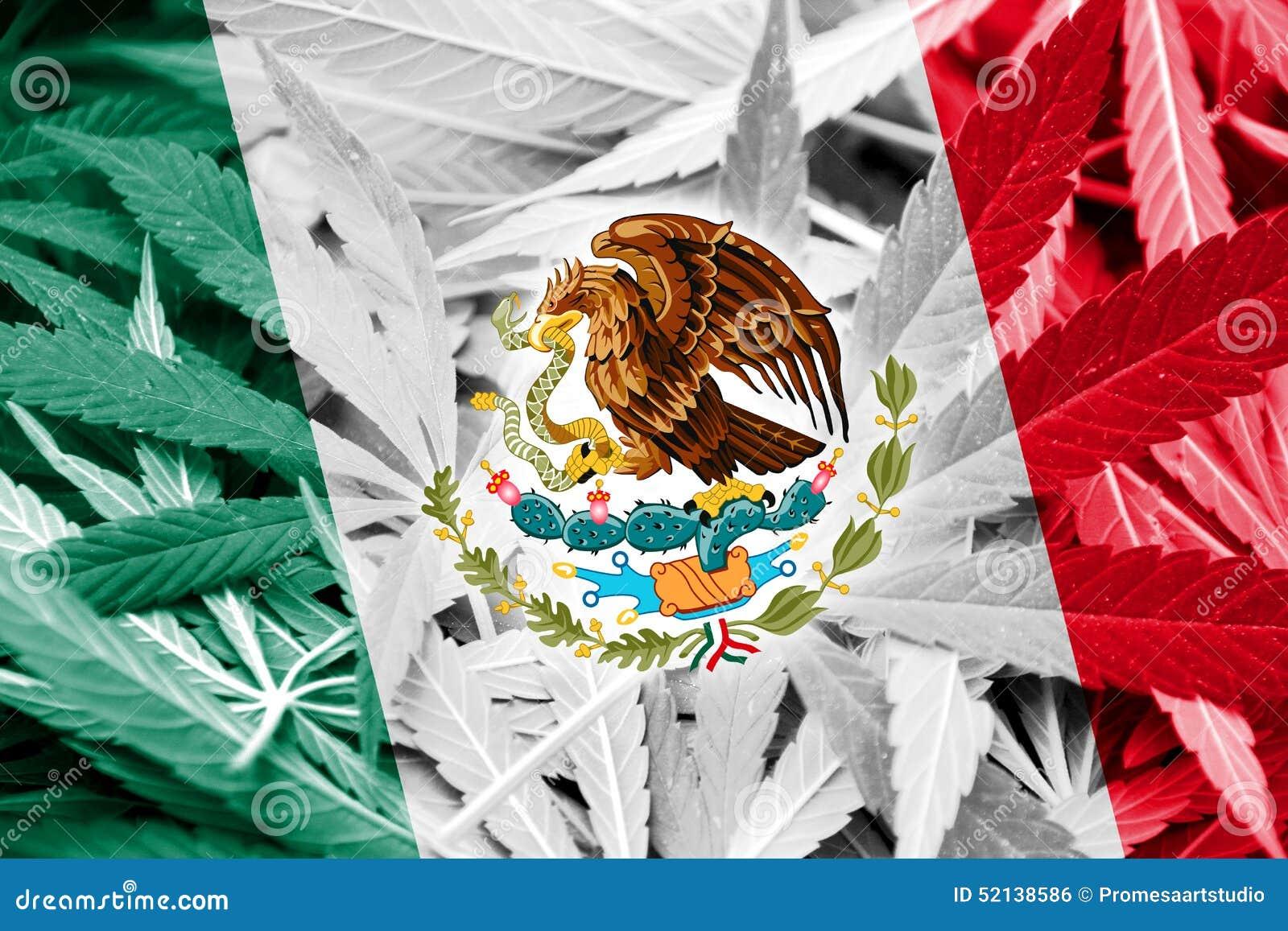 Bandera De México En Fondo Del Cáñamo Política De La