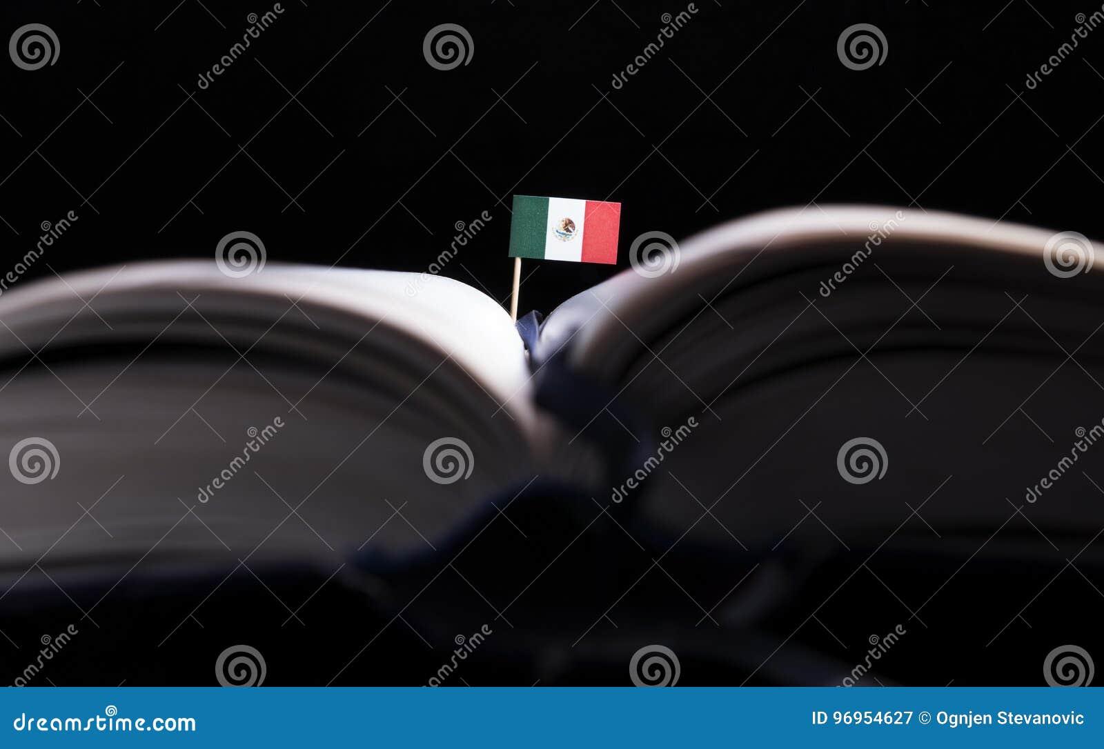 Bandera mexicana en el medio del libro Conocimiento y educación
