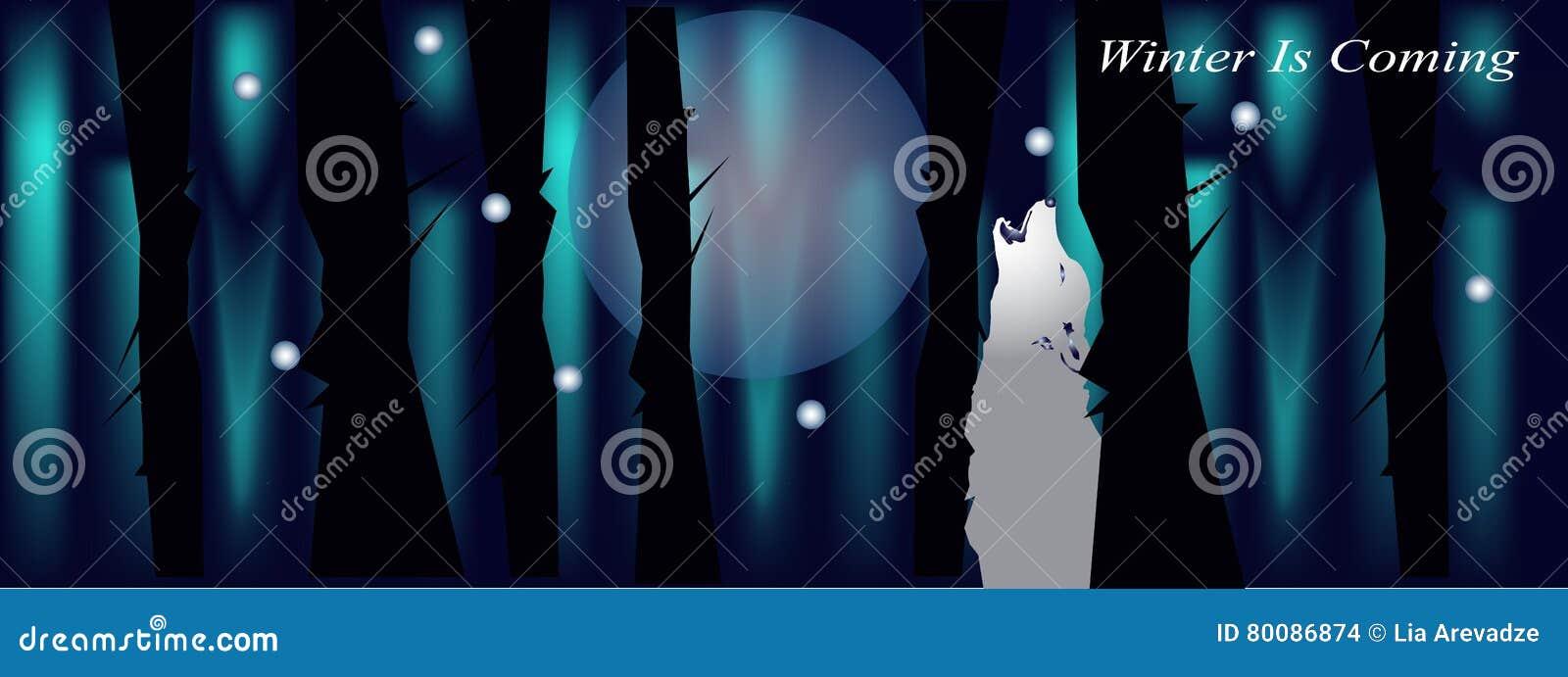Bandera Para La Cubierta Del Facebook Con El Lobo Y La Luna Del