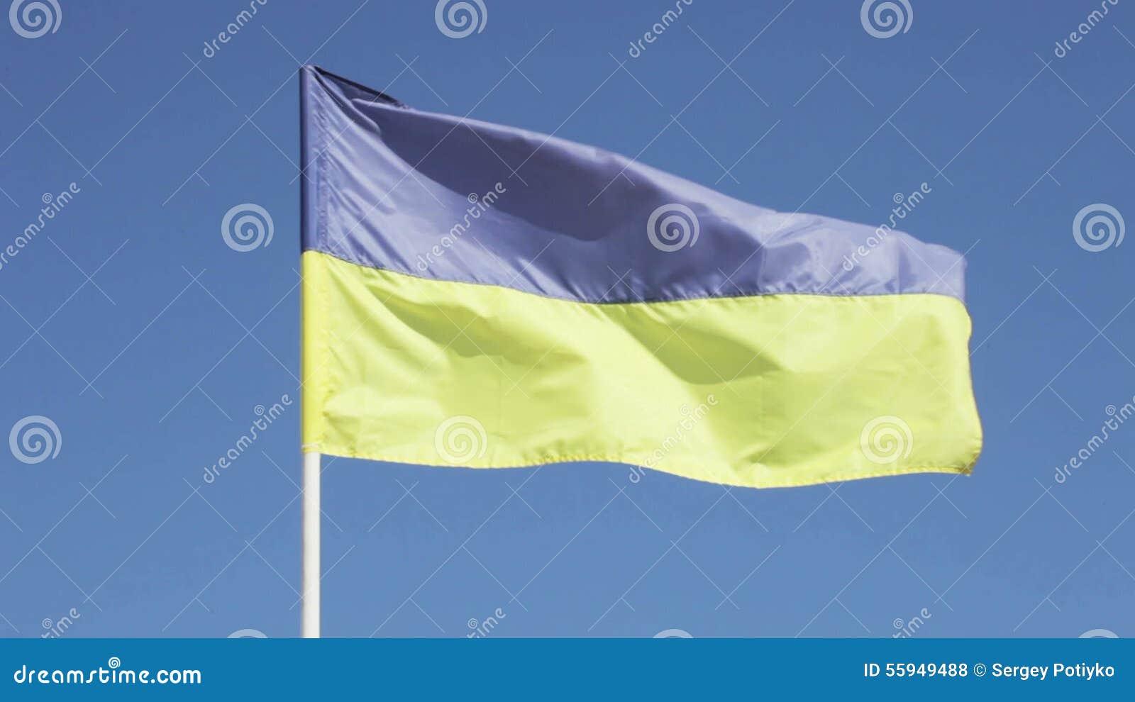 Bandera ucraniana almacen de video
