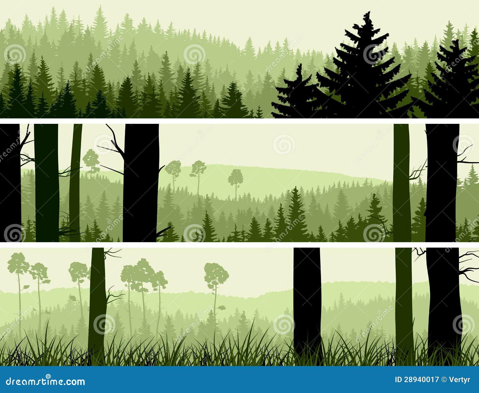 Banderas horizontales de la madera conífera de las colinas.