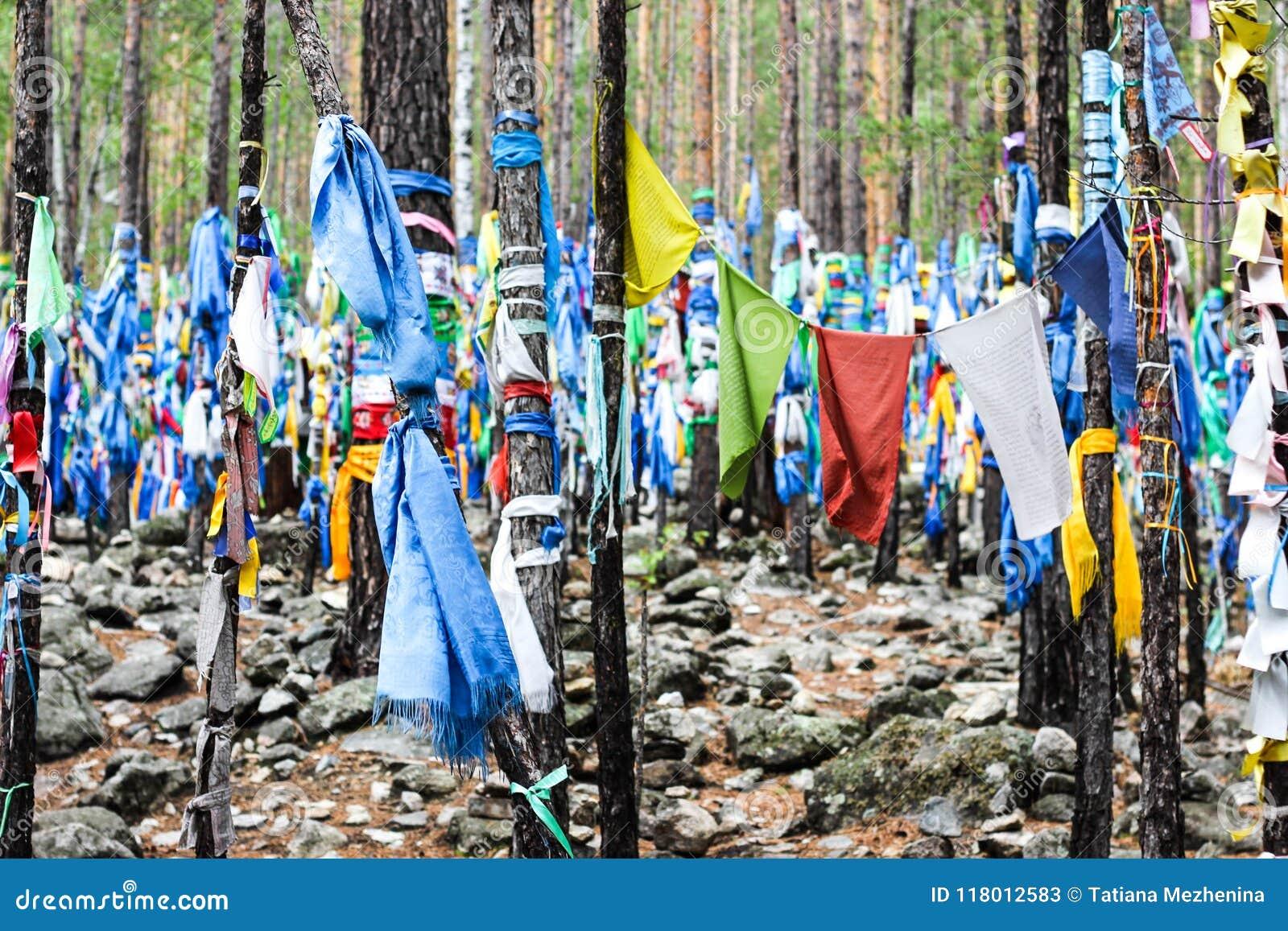 Banderas shamanic budistas del rezo en árboles rituales
