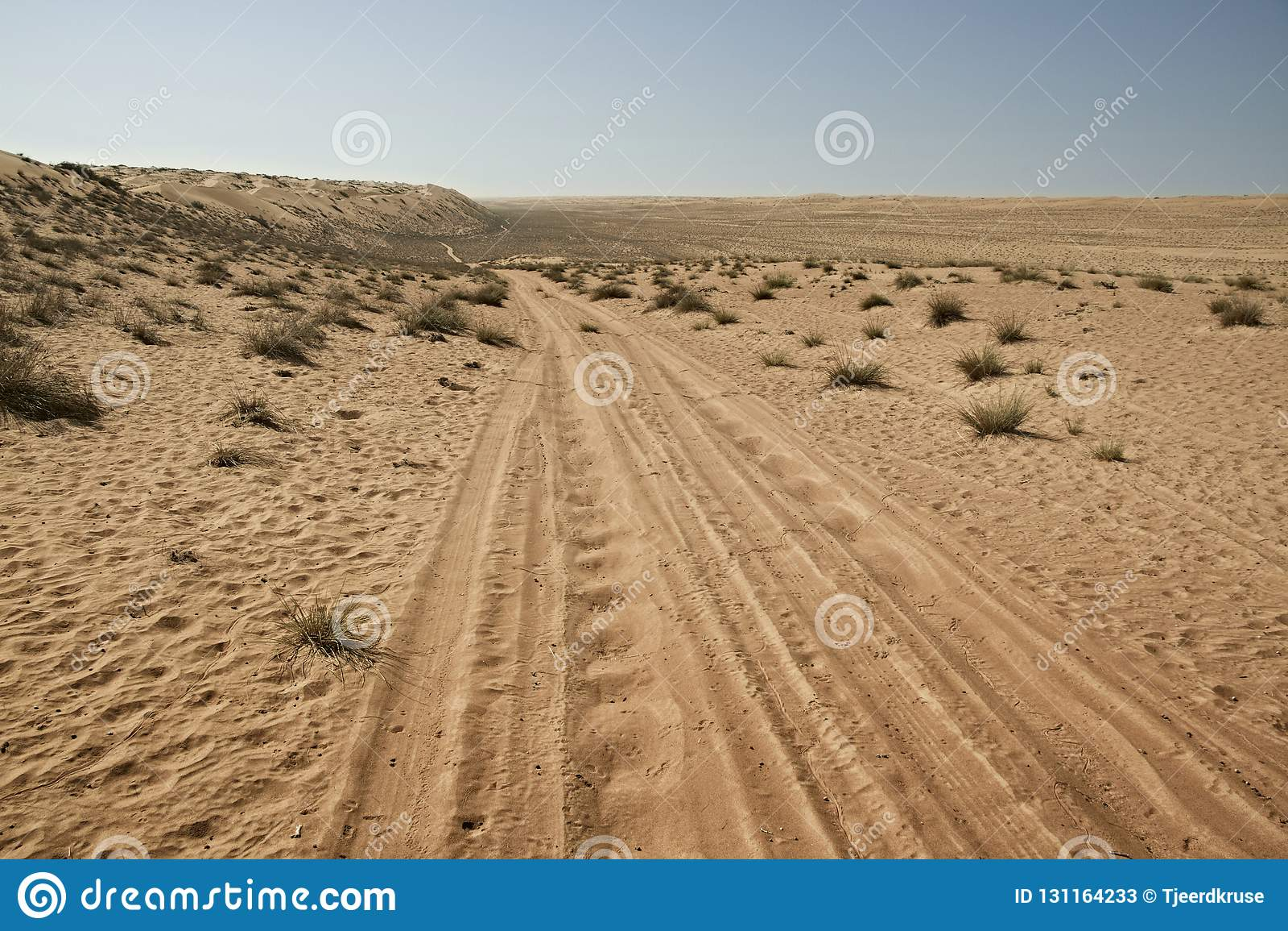 Bandez/voies de pneu par les dunes de sable de désert