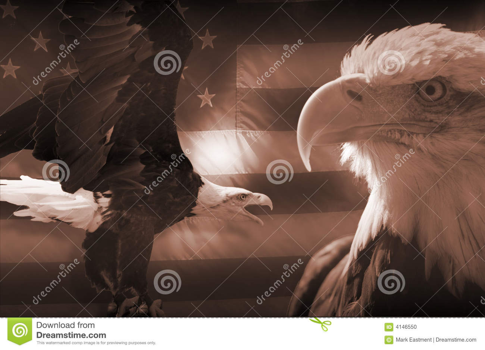Bandiera americana ed aquile