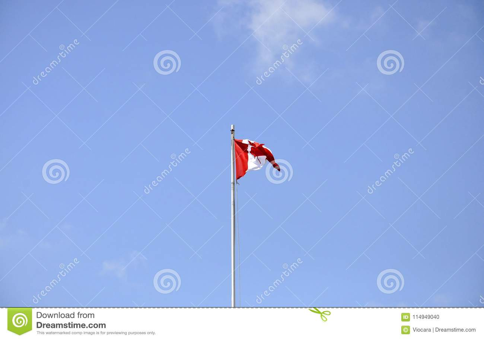 Bandiera canadese nel vento
