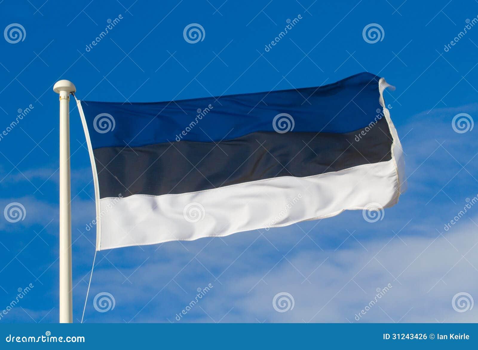 Bandiera dell Estonia