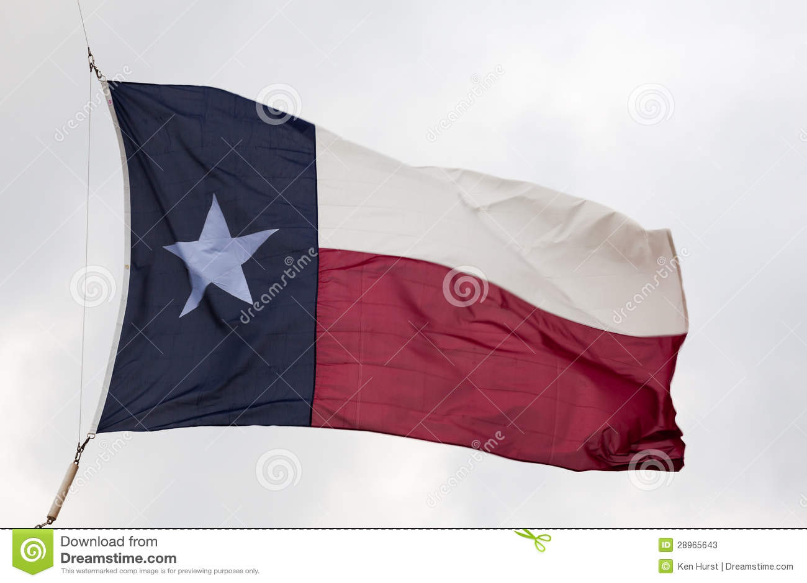Bandiera dello stato del Texas